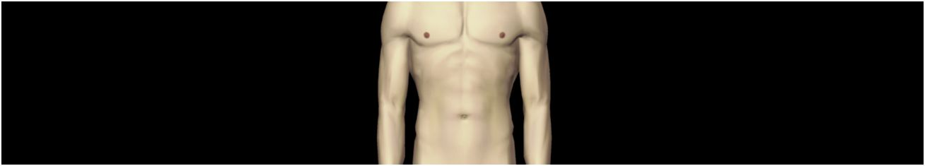 Bauch (Abdomen) - Gesundmed – Medizin und Gesundheit im Web