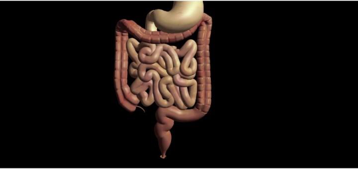 Kapsel-Endoskopie (Video-Kapsel-Endoskopie) - Definition ...