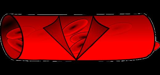 Blutgefäß mit roten Blutkörperchen