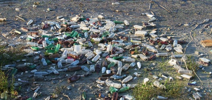 Wasser, Müll, Plastikflaschen
