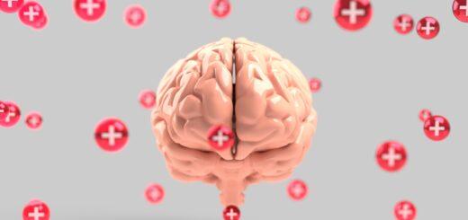 Gehirn (Foto: Pixabay.com)