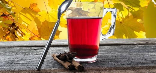 gegen bronchitis hausmittel